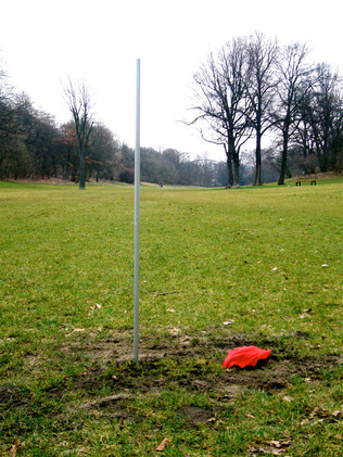 Ohne Titel (Flagge im Park)