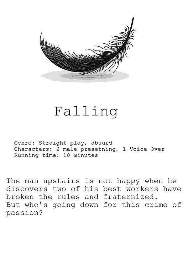 falling website 1.jpg