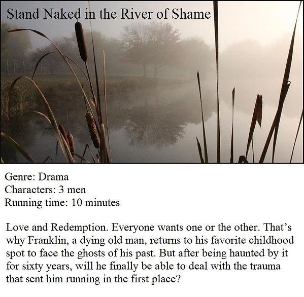 Stand naked udated blurb.jpg