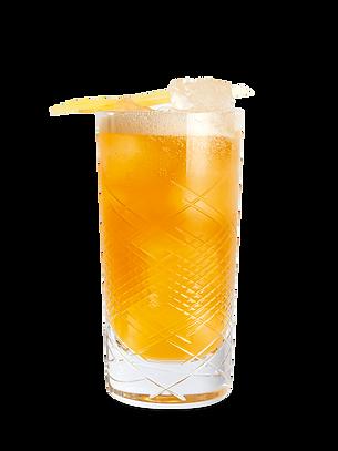 Whisky-Cocktail-Rezept-Rye-and-Ginger-12