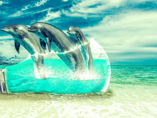 Hypnose – den inneren Reichtum mit Hypnose nutzen