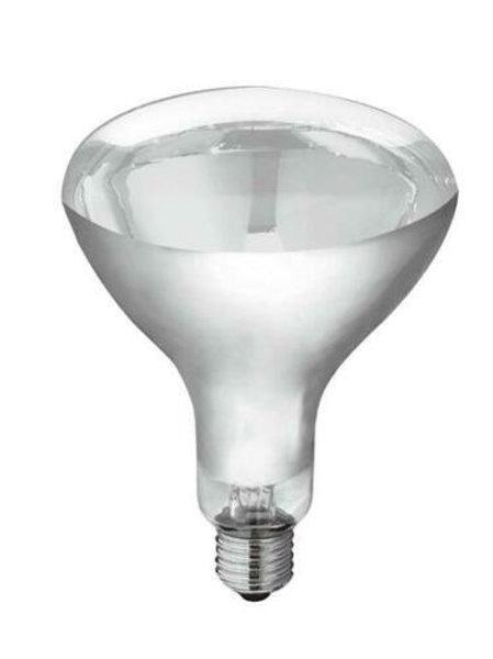 HEAT LAMP 275W (SB-INFRARED)