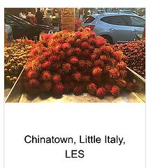 ©Julia Ryan Chinatown Little Italy LES Tour