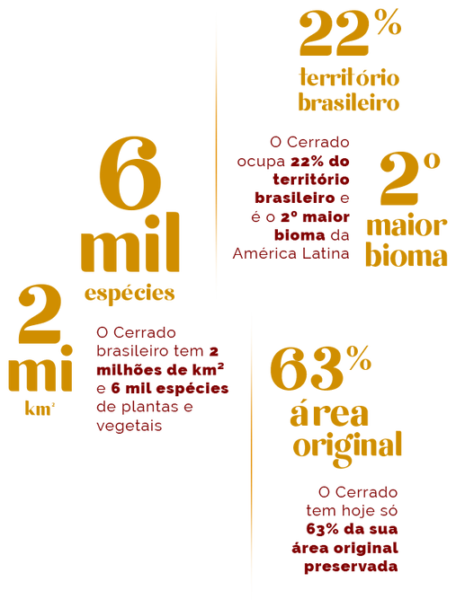 infografico-atualizado (1).png