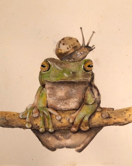 Lynn Scott, Frog, Watercolor with Perri Mason