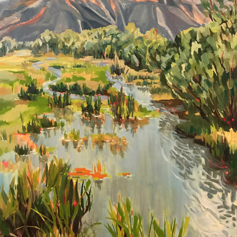 Madison River Wetland by Deliece Blanchard