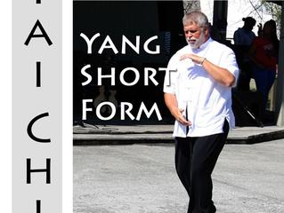 24 Form Tai Chi Yang Style: Jan 22