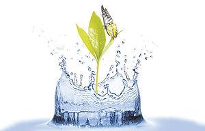 Soluciones-para-cuidar-el-agua.jpg
