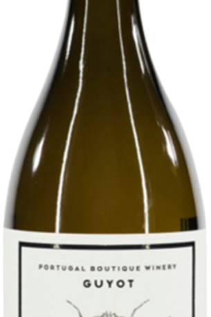 Portugal Boutique Winery Guyot Moscatel Galego 2018