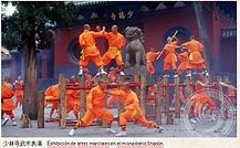 少林寺和它的洋弟子们2.png