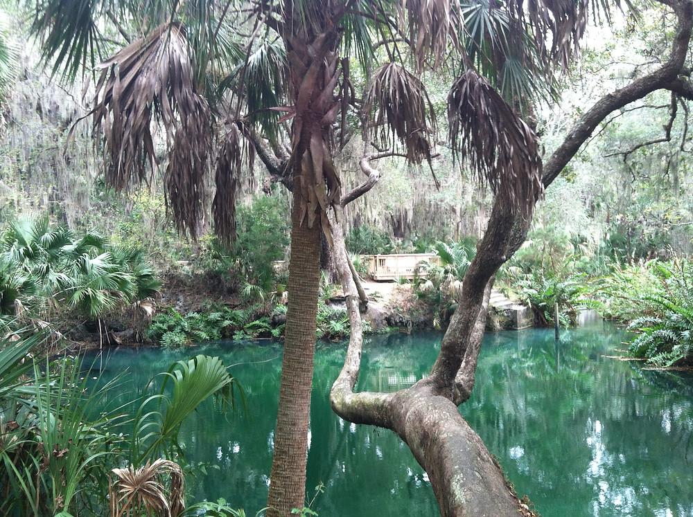 Green Springs, FL