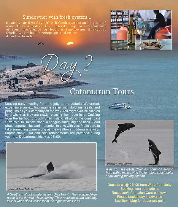 Catamaran Tours | Accomodation Luderitz | Obelix Guesthouse | Things to do