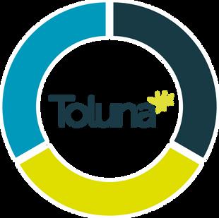 toluna graph.png