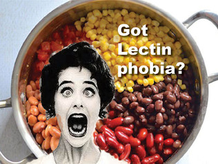 No need to fear lectin