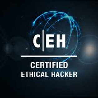 MasterClass Certified Ethical Hacker Program