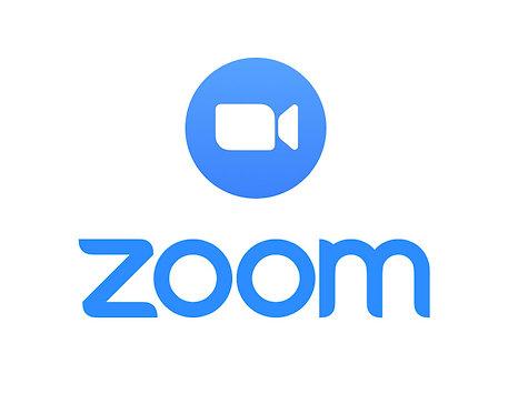 4 week One on One Mindset Coaching via Zoom