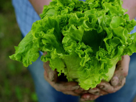 List: Lettuce Number the Reasons to Join Community-Supported Agriculture