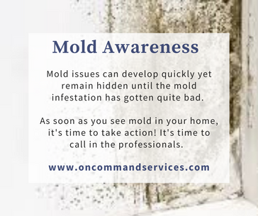 Copy of Copy of On Command -  mold aware