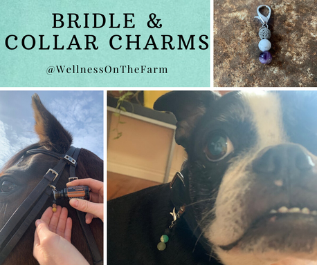 Bridle & Collar Charms.png
