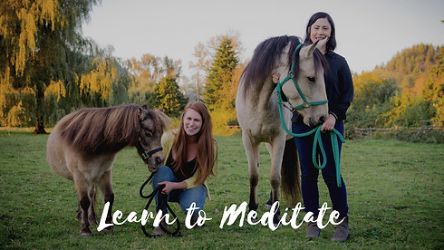 Learn to Meditate Course - website image