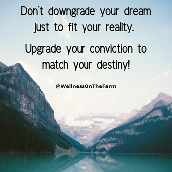 Don't downgrade your dream just to fit y