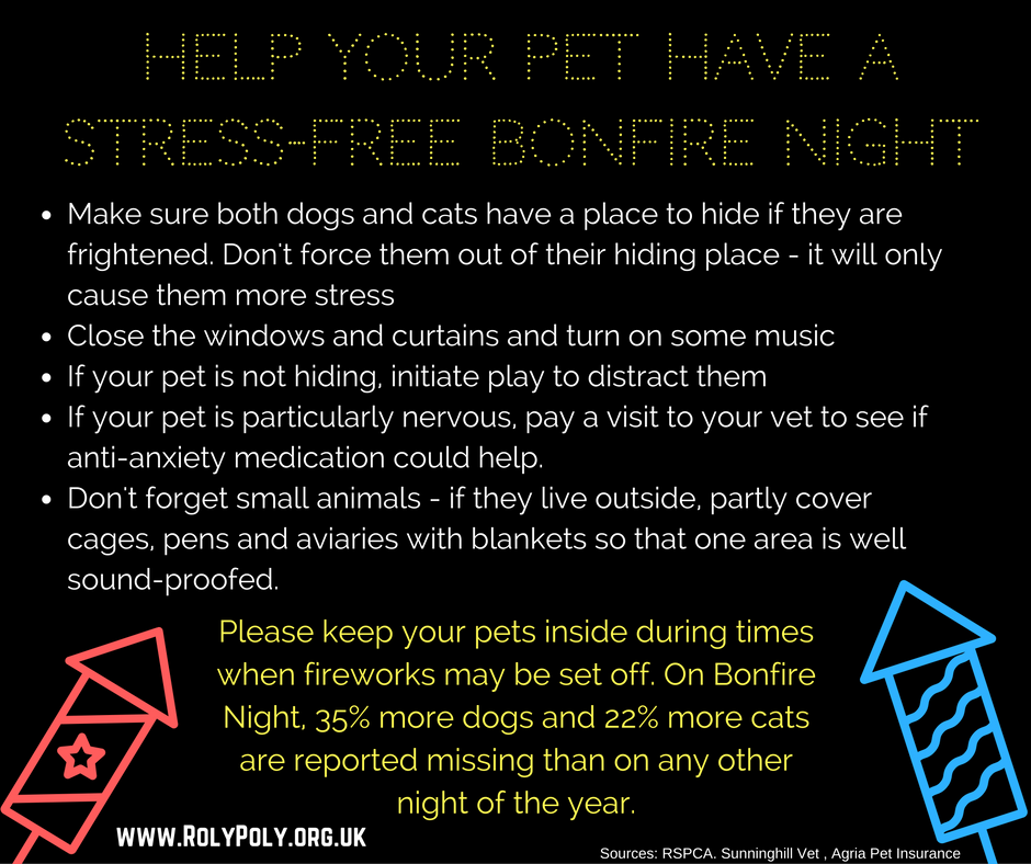 Tips for a stress free bonfire night