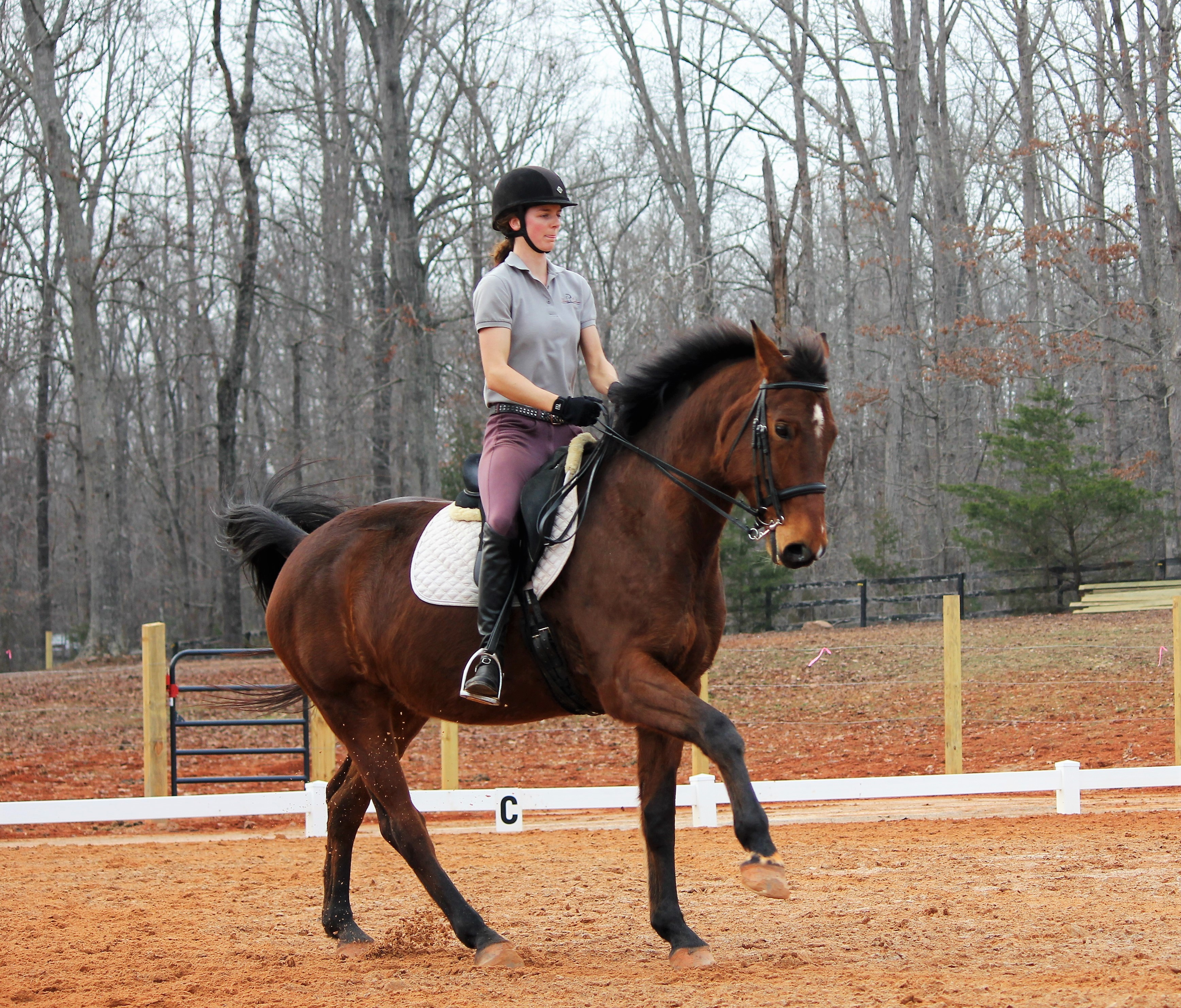 Riding Instructor Williamsburg