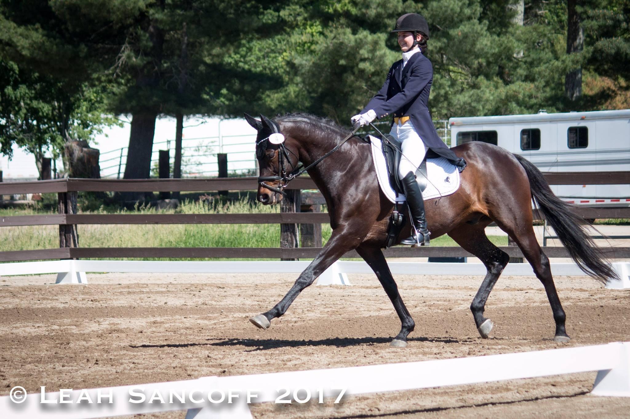 Horse trainer Chesapeake