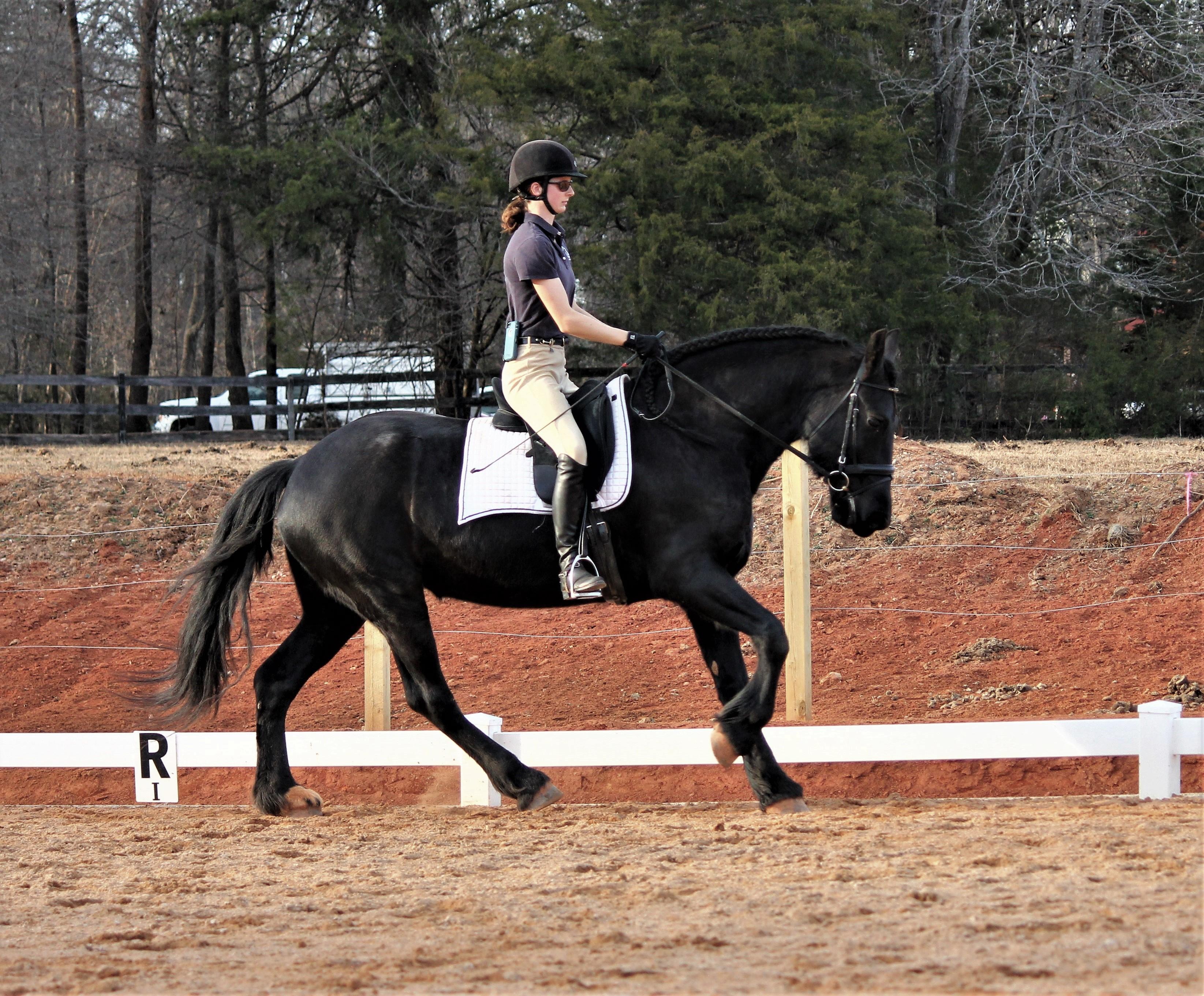 Horseback Riding Lessons Smithfield