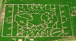 The_Farm_Corn_maze