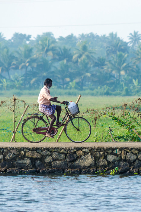 Early morning Cyclist in the backwaters of kerala