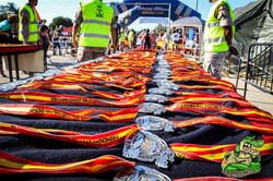 Fan-Pin Race 2017