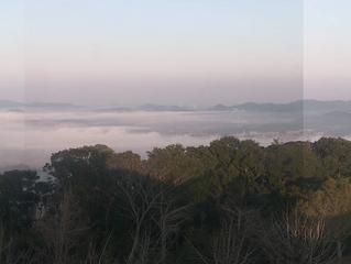 彼岸の入りの霧