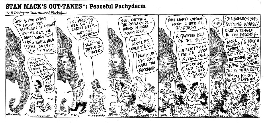 peaceful pacyderm.jpg