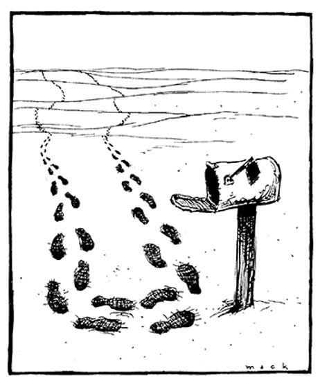 footsteps in desert.jpg