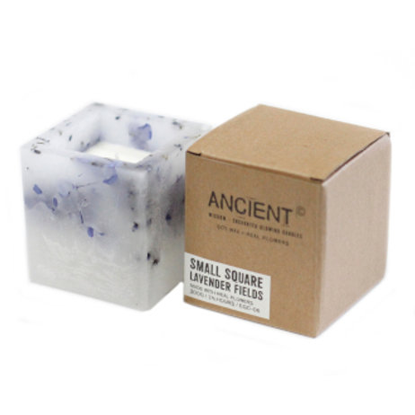 Enchanted Candle - Small Square Jar