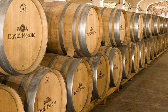 Wine Holidays: A Rioja Travel Guide
