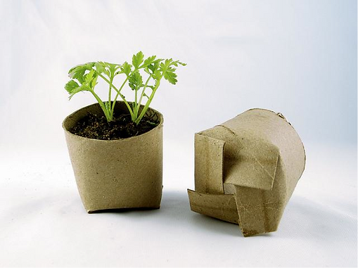 Eco Friendly Gardening Tips