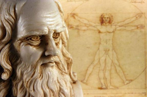 Leonardo Da Vinci Vineyard Reborn