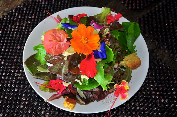 Edible Flowers – Nibbling On The Prettiest Produce In Your Garden