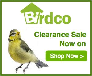 Birdco
