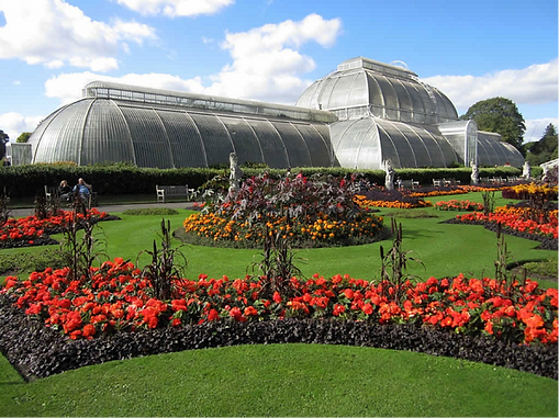 Explore Kew Gardens