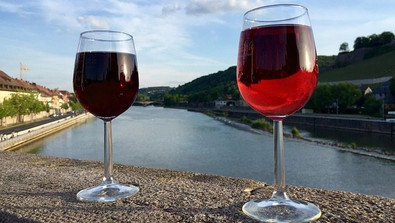 All You Need To Know About Red Wine