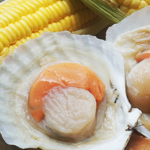 1/2 Shell Scallop Jumbo 1kg (2 portion)