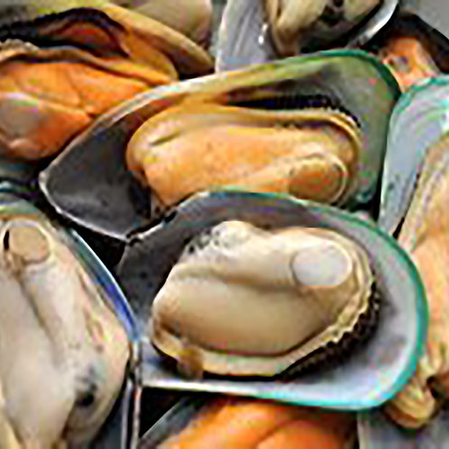 NZ Mussel 300g bag (2 portion)