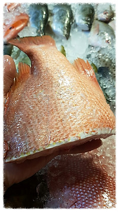 Wild Caught Red Snapper Tail