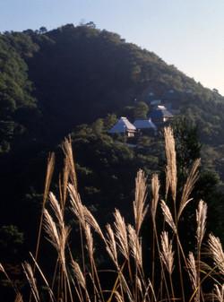 皇学園(ススキと支部の家)