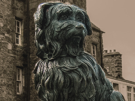 Greyfriars Bobby-A Tale of Loyalty