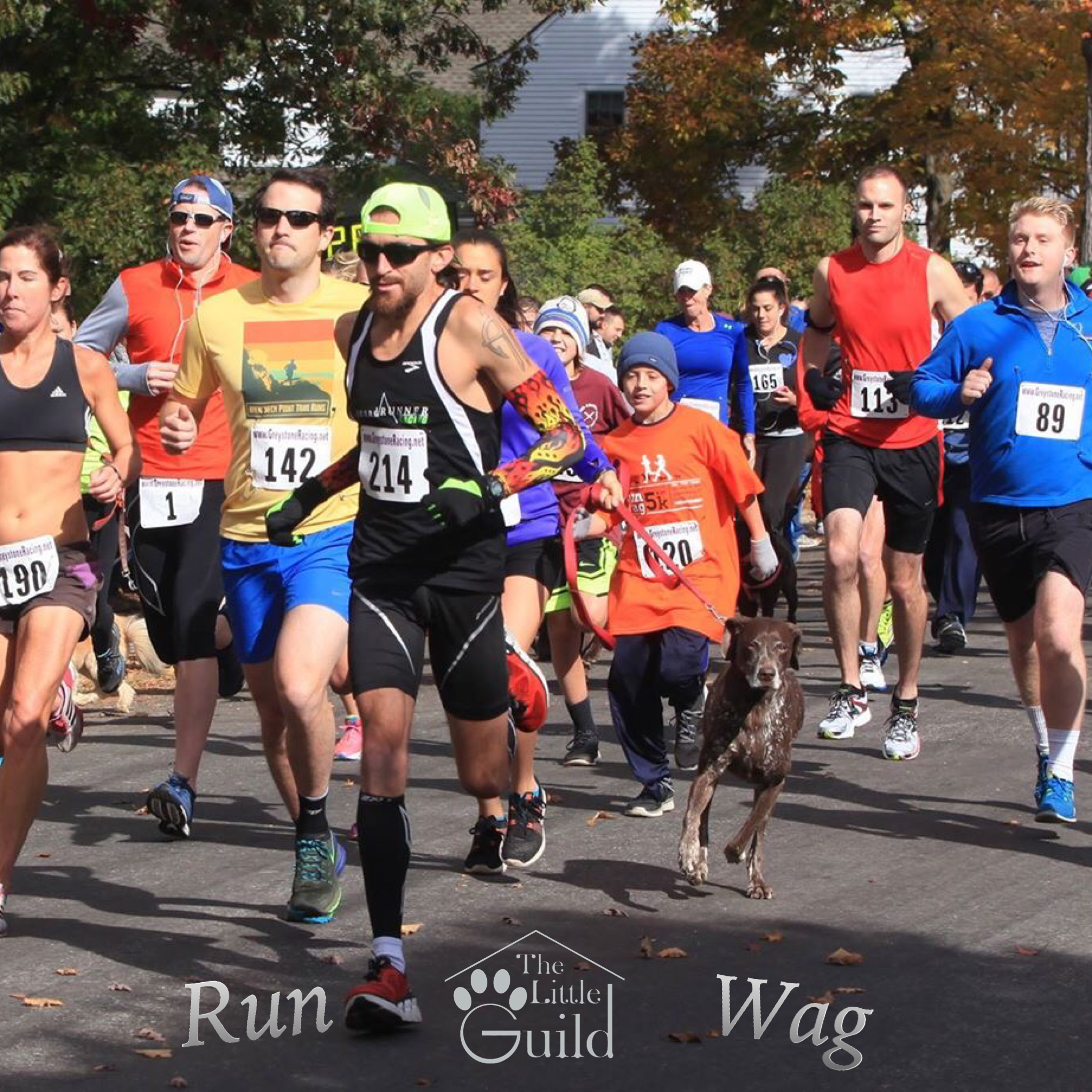 Run & Wag 5K