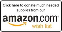 Little Guild Amazon Wish List